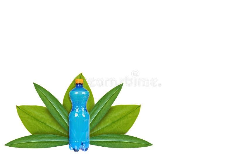 Botella plástica de agua potable en el fondo de hojas verdes Aislado en blanco noción del origen natural fotos de archivo