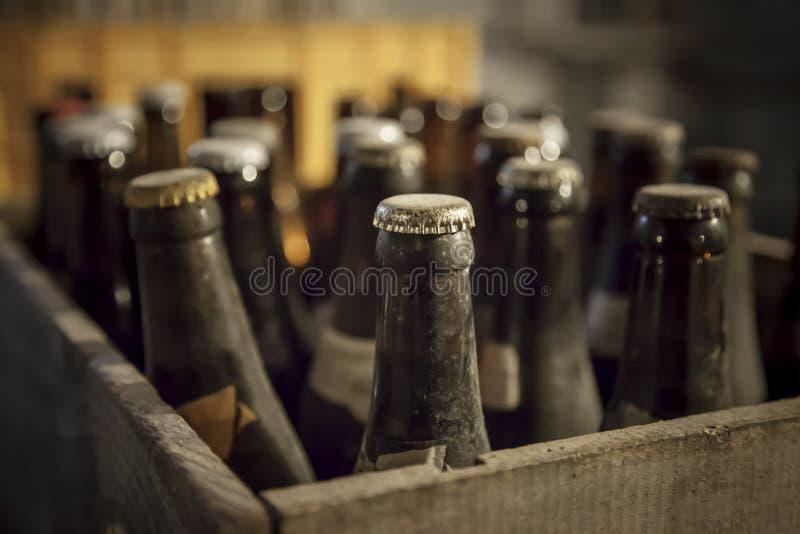 Botella polvorienta vieja de cerveza imágenes de archivo libres de regalías