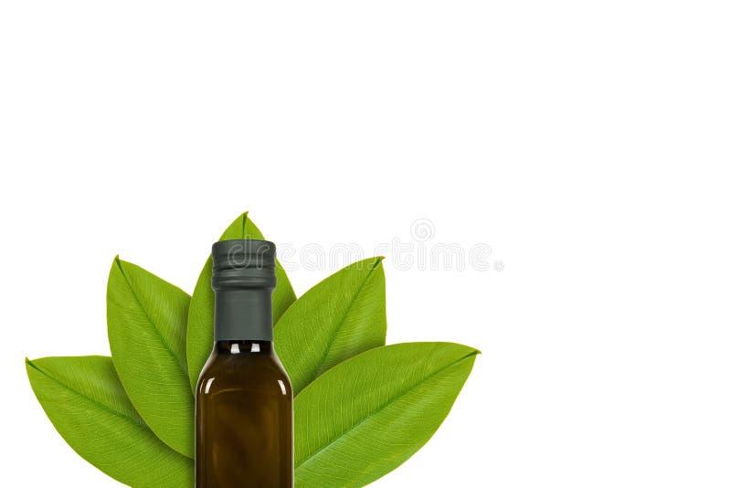 Botella verde de aceite de oliva en el fondo de hojas verdes Aislado en blanco noción del origen natural imagen de archivo