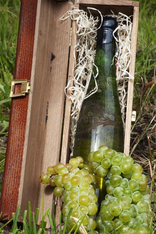 Botella vieja de vino blanco con las uvas fotos de archivo