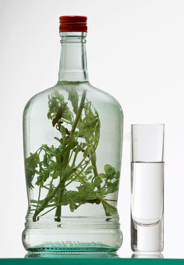 Botella y vidrio de rakia de la hierba imagen de archivo libre de regalías