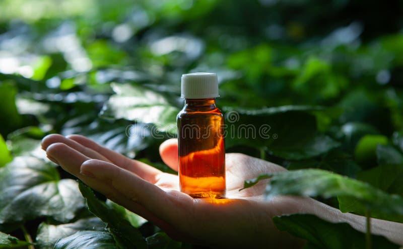 Botellas con aceites esenciales orgánicos del aroma foto de archivo