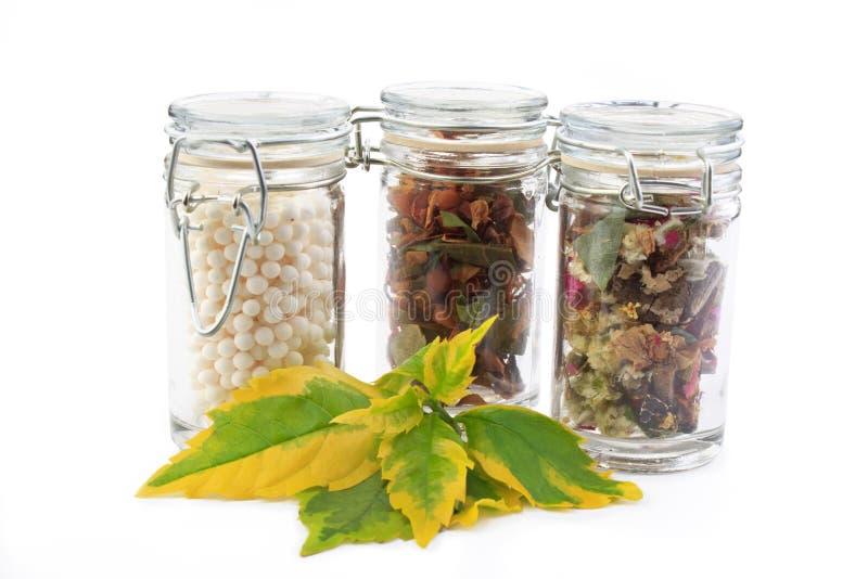 Botellas con la medicina alternativa y una planta foto de archivo