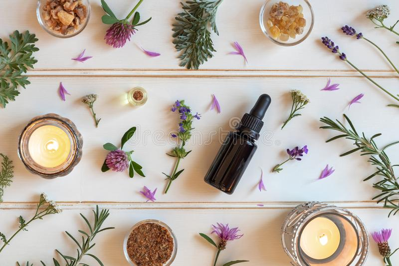 Botellas de aceite esencial con el incienso, Hisopo, lavanda y imágenes de archivo libres de regalías