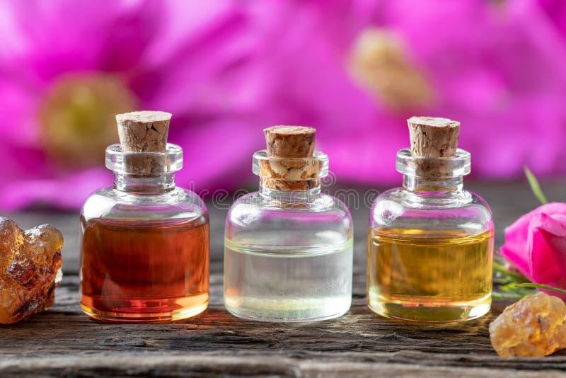 Botellas de aceite esencial con incienso y las rosas de Rugosa fotos de archivo