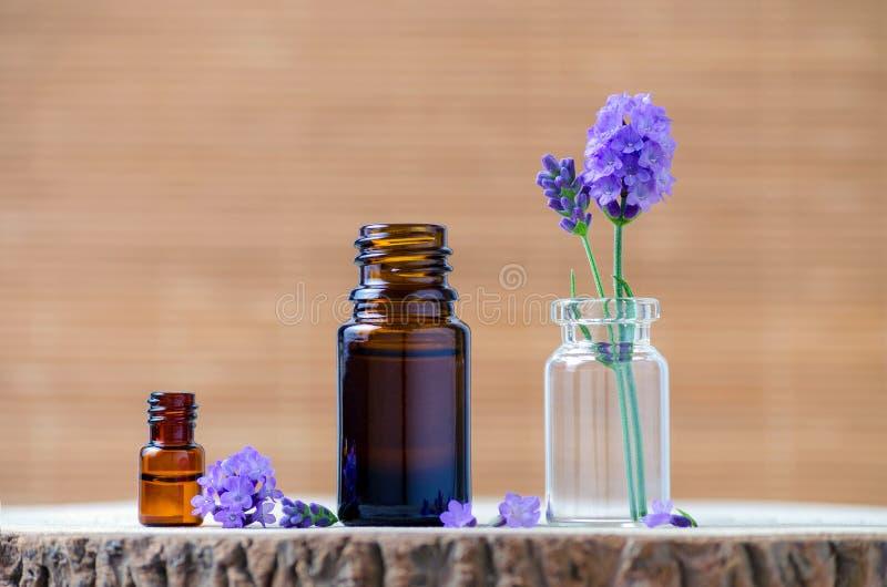 Botellas de aceite esencial de la lavanda y flores frescas para el aromatherapy imagen de archivo