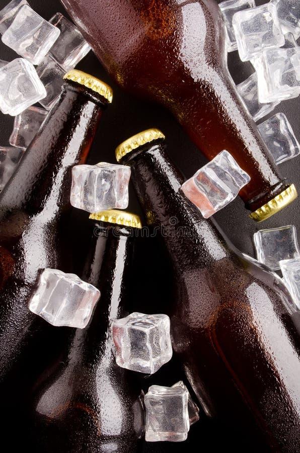 Botellas de cerveza. imagen de archivo libre de regalías