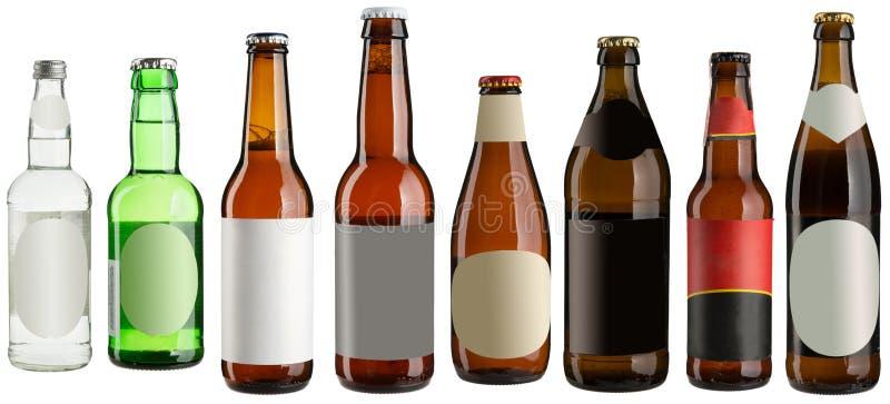 Botellas de cerveza aisladas en blanco fotos de archivo