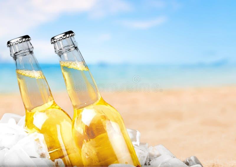 Botellas de cerveza con hielo en fondo ligero imagenes de archivo
