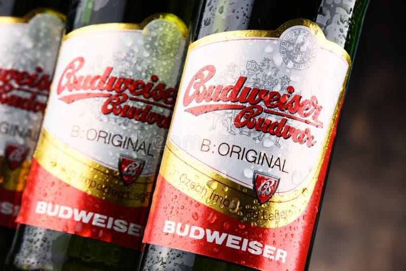 Botellas de cerveza de Budweiser Budvar imágenes de archivo libres de regalías
