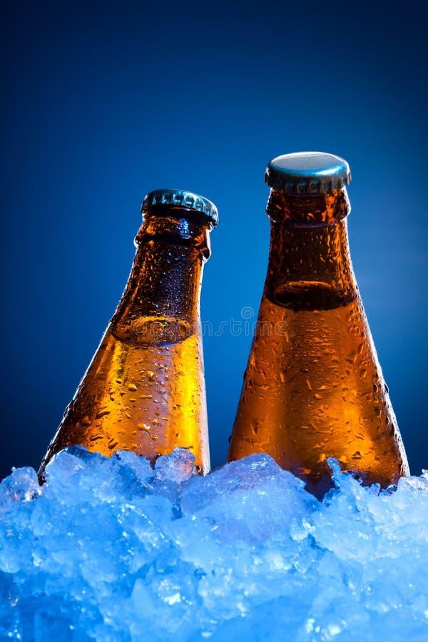 Botellas de cerveza de los pares en hielo fotografía de archivo