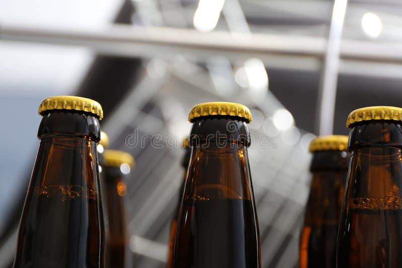 Botellas de cerveza en cervecería imagenes de archivo