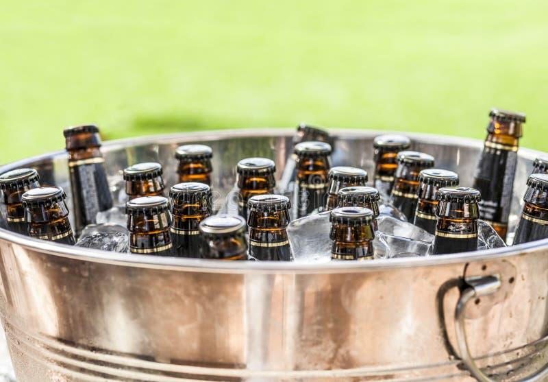 Botellas de cerveza en el cubo de hielo con el fondo de la hierba verde imágenes de archivo libres de regalías