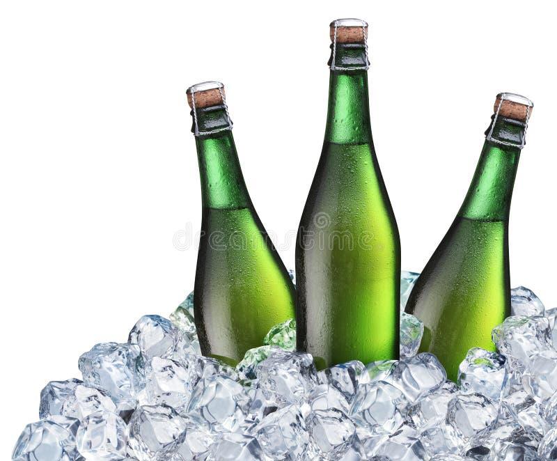 Botellas de cerveza en el hielo fotografía de archivo