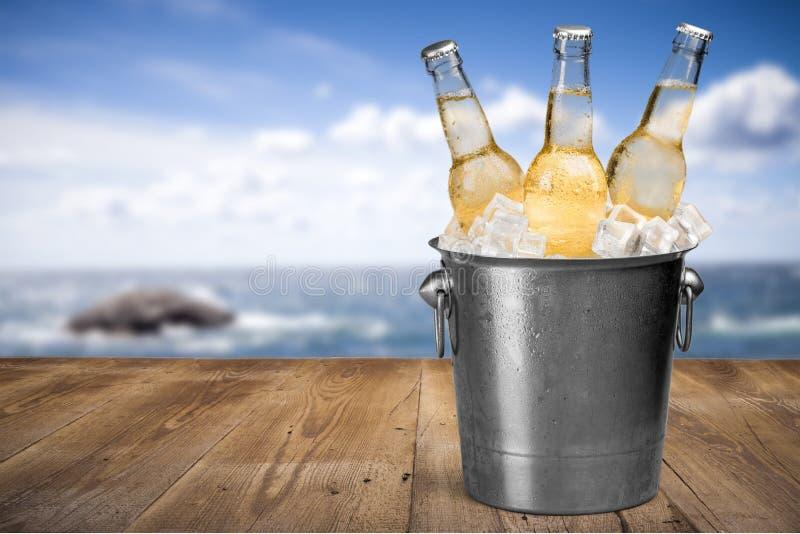 Botellas de cerveza en hielo en fondo de la playa imágenes de archivo libres de regalías