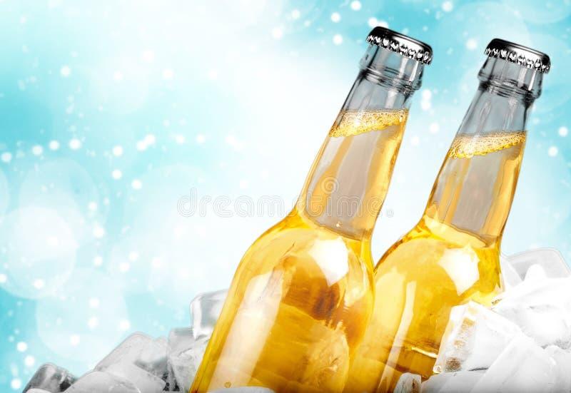 Botellas de cerveza en hielo en fondo ligero foto de archivo libre de regalías