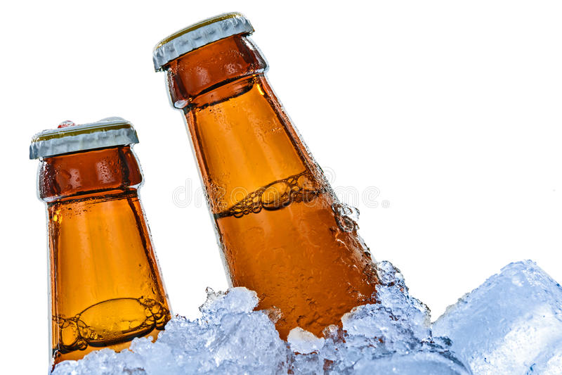 Botellas de cerveza fría fotografía de archivo