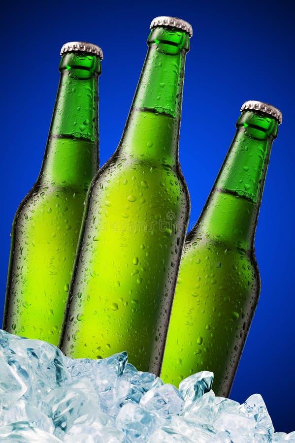 Botellas de cerveza verdes foto de archivo libre de regalías