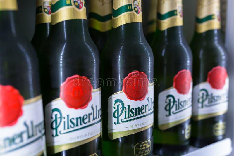 Botellas de cervezas de Pilsner Urquell en el refrigerador imagen de archivo libre de regalías