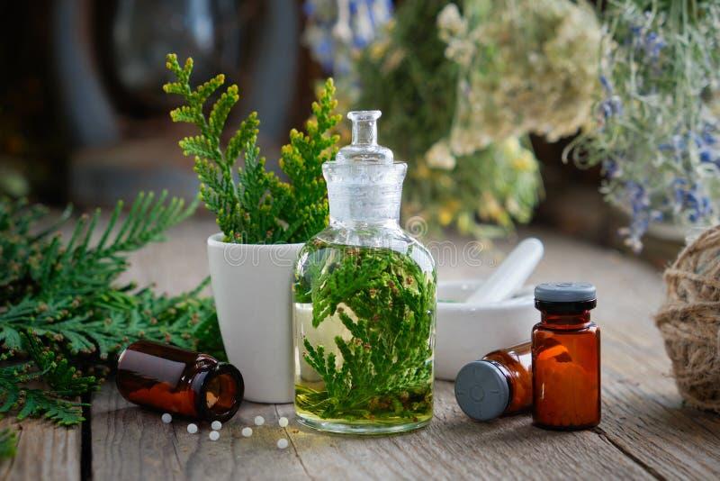 Botellas de glóbulos, de infusión del Thuja, de occidentalis planta del Thuja y de mortero homeopáticos homeopathy imagen de archivo