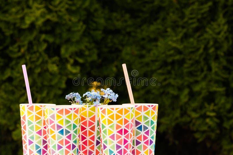 Botellas de situación recientemente exprimida del jugo de la naranja y de la baya en una bandeja de madera en una mesa de picnic  imágenes de archivo libres de regalías