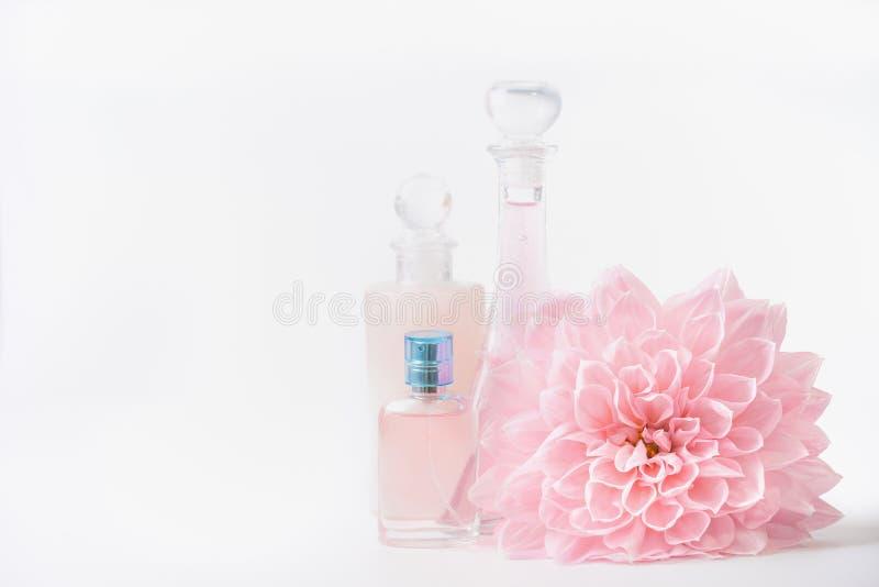 Botellas del cosmético y de perfume con la flor pálida rosada en el fondo blanco, vista delantera Belleza y cuidado de piel foto de archivo libre de regalías