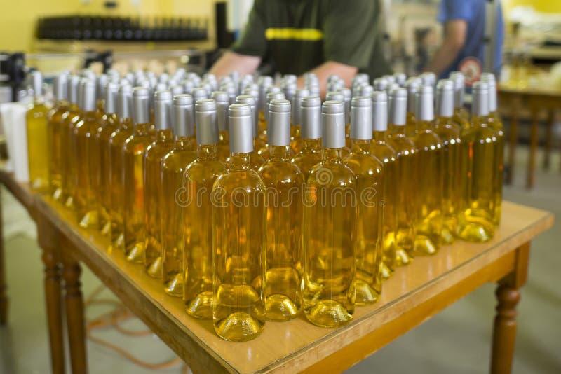 Botellas del vino blanco en un lagar foto de archivo libre de regalías