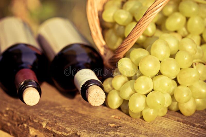 Botellas del vino blanco rojo y y manojo de uvas imagen de archivo libre de regalías