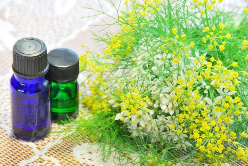 Botellas e hierbas del aroma imágenes de archivo libres de regalías