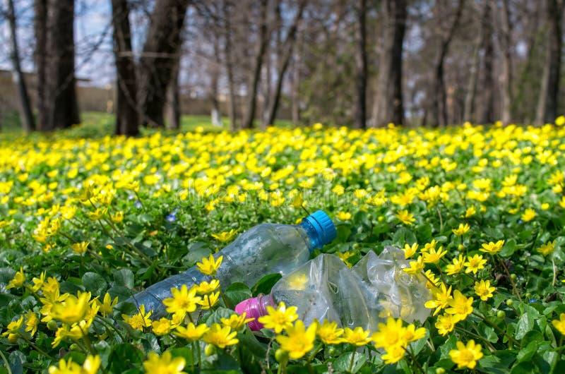 botellas plásticas desechadas y empaquetado en la hierba fotografía de archivo