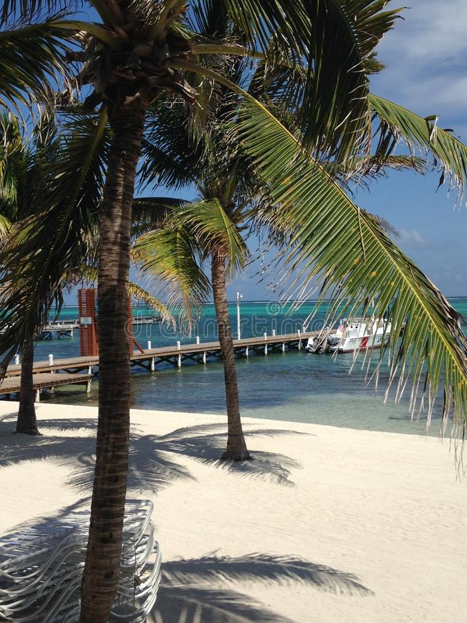 Boten, dokken en zand San Pedro, Amber Caye Belize royalty-vrije stock foto's