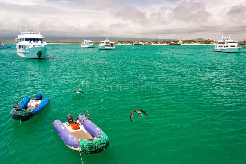 Boten en Pelikanen in de Galapagos stock afbeeldingen