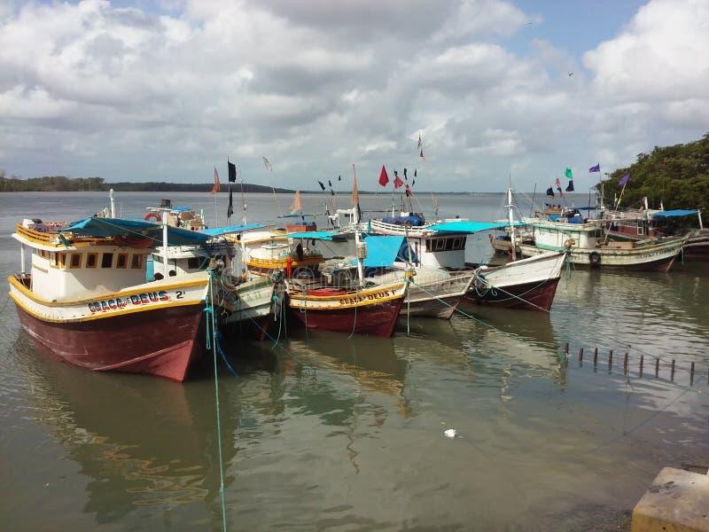 Boten op de rivier, Brazilië stock fotografie