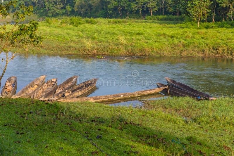 Boten van Rapti-Rivier in het Koninklijke Nationale Park van Chitwan, Nepal stock foto