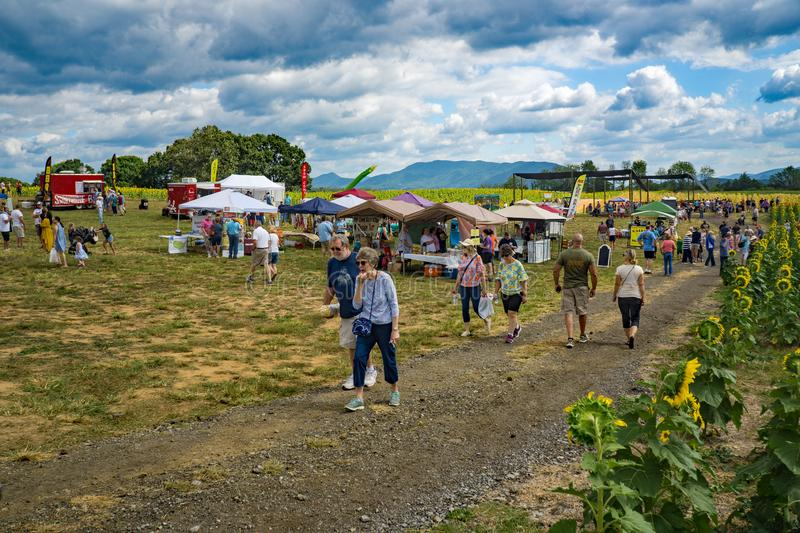 Visitors Enjoying the Annual Sunflower Festival. Botetourt County, VA, September 7th: visitors enjoying the annual Sunflower Festival on a beautiful sunny autumn royalty free stock photo