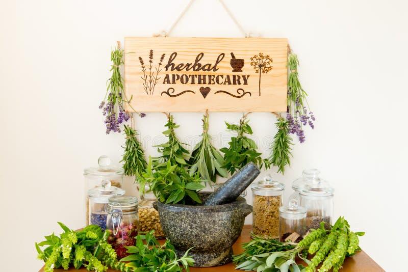 Boticario herbario con el secador de la hierba, hierbas frescas, tarros y mortero y maja foto de archivo libre de regalías