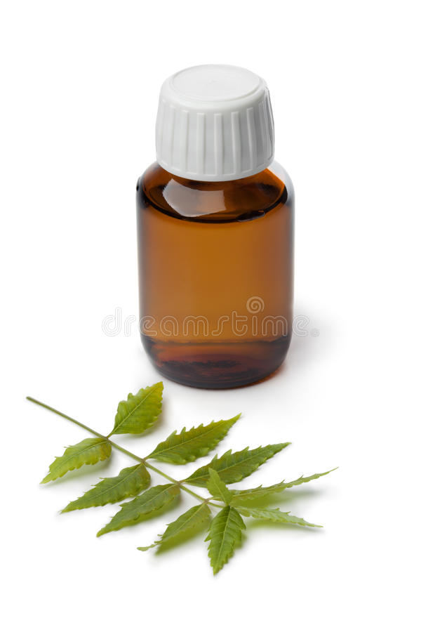 Botlle with Neem oil stock image