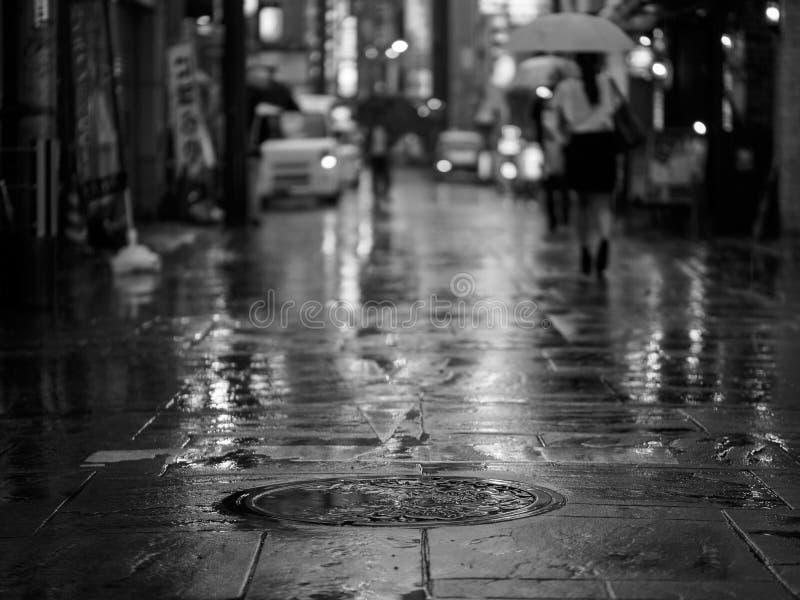 Botola nella pioggia nel Giappone immagini stock