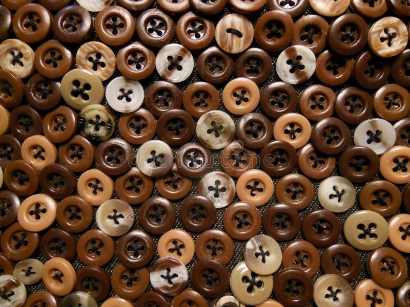 Botones brillantes de Brown foto de archivo libre de regalías