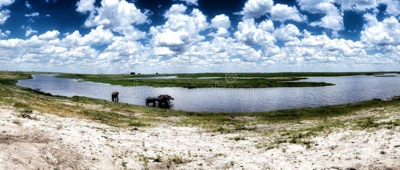botswana imágenes de archivo libres de regalías