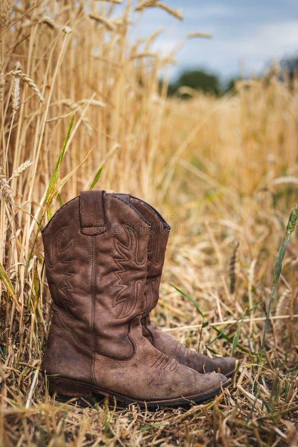 Botte de cowboy dans le domaine agricole image stock