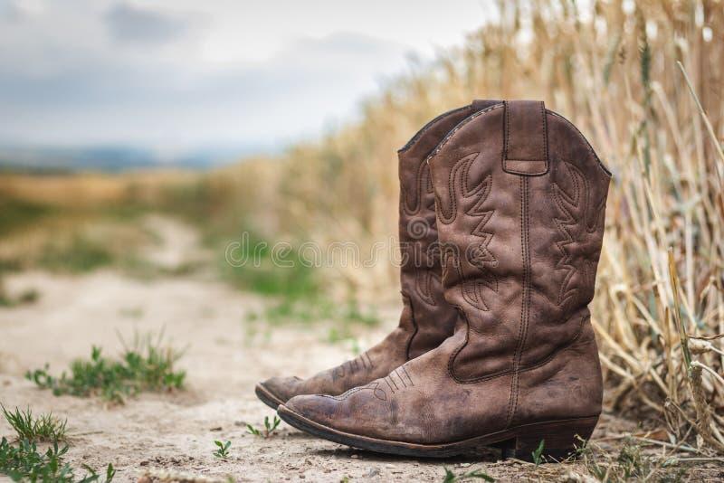 Botte de cowboy sur le chemin de terre à côté du champ de blé image stock