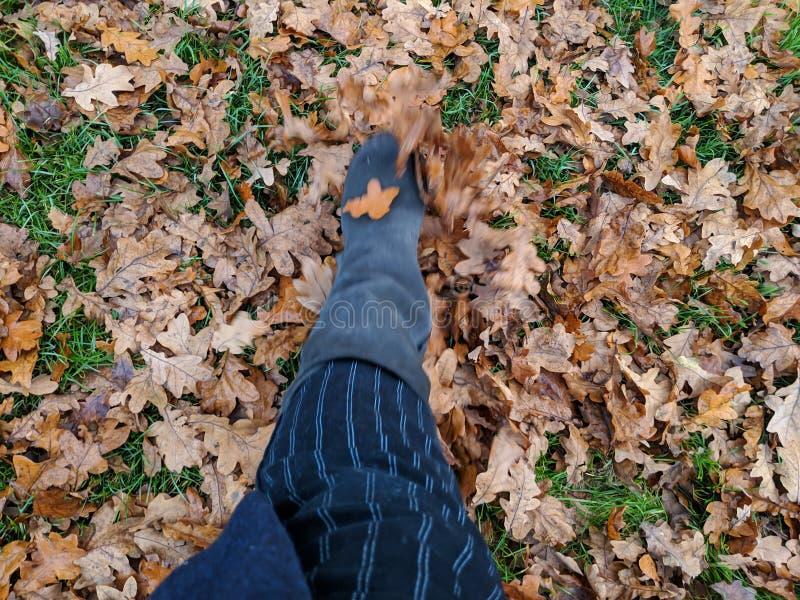 Botte donnant un coup de pied des feuilles d'automne photos libres de droits