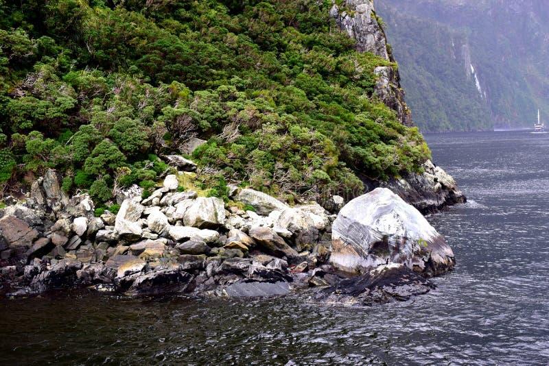 Botten av ett berg i Milford Sound Nya Zeeland arkivbilder