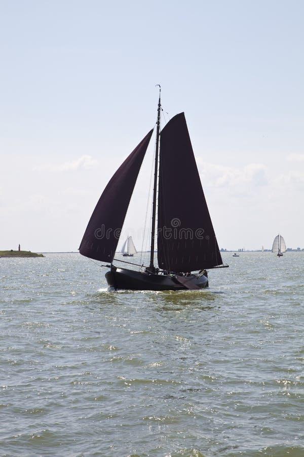 Botter (navio holandês da pesca) no IJsselmeer imagem de stock royalty free