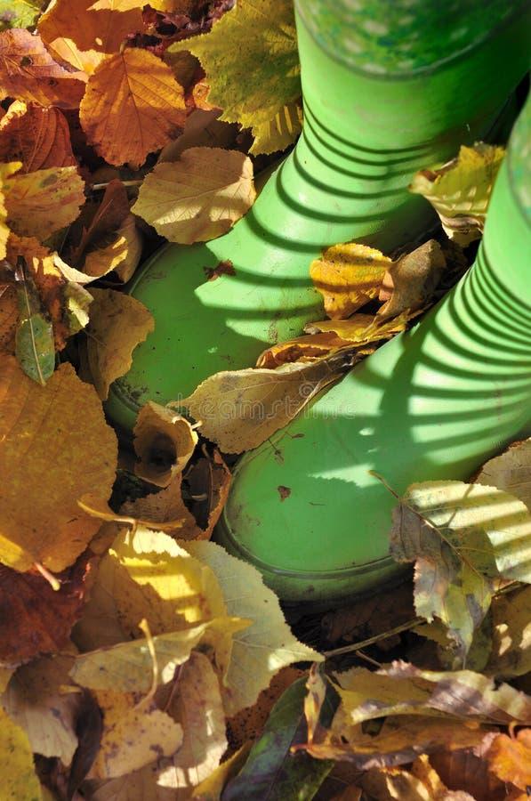 Bottes dans des feuilles mortes images stock