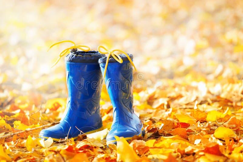 Bottes en caoutchouc sur les feuilles d'automne image stock