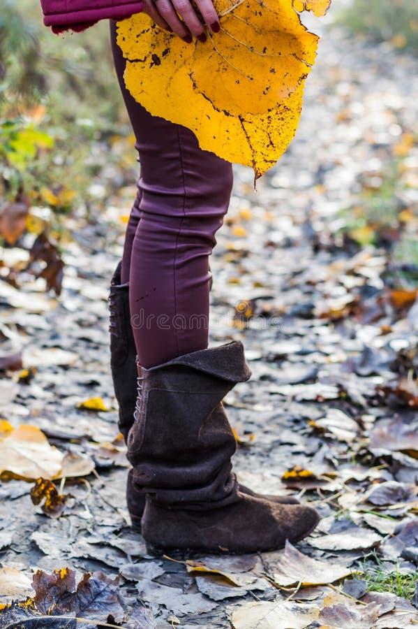 bottes en cuir brunes et feuille jaune photographie stock