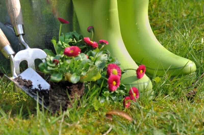 Bottes pour le jardinage image stock