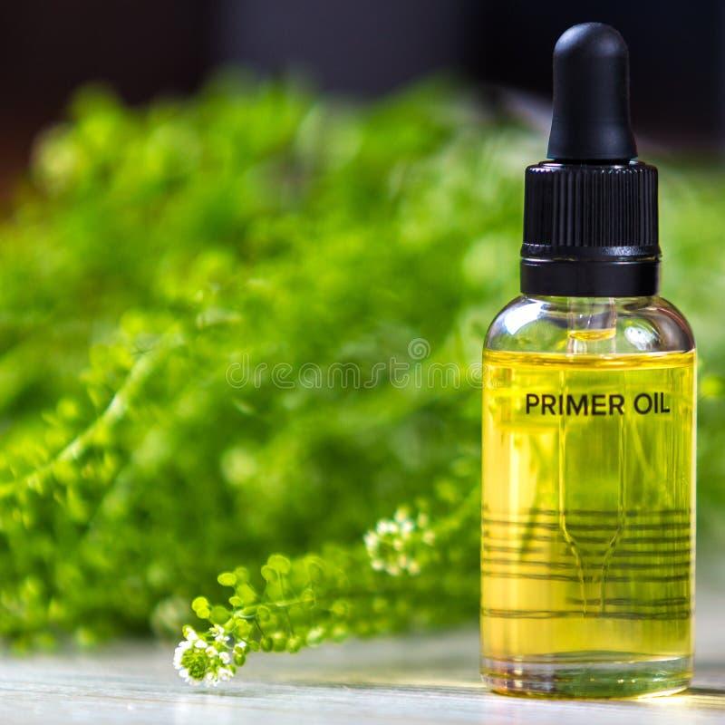 Bottiglia con olio per il fronte Cosmetico significa fotografia stock libera da diritti